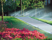 Byrd's Irrigation & Landscaping