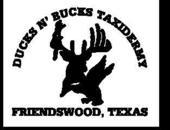 Ducks N Bucks Taxidermy