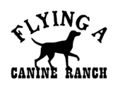 Flying A Canine Ranch