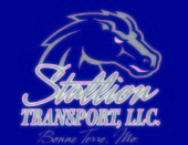 Stallion Transport L L C