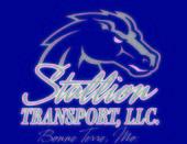 Stallion Transport L L C