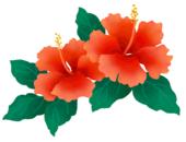 Aloha Home Health, LLC