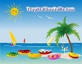 Tropical SnoBalls