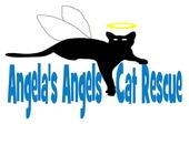 Angela's Angels Cat Rescue, Inc.