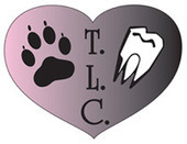Animal Dentistry and Oral Surgery Specialists, LLC