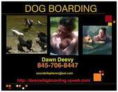 Dawn's Dog Boarding