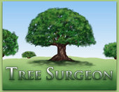 Orange Park Tree Surgeons - COMPLETE TREE SERVICE