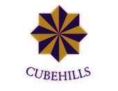 CUBEHILLS Corporation