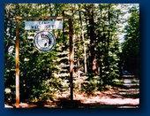 Camp Wachusett For Boys