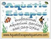 Aquatic Escapes Aquariums, L.L.C.