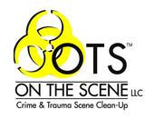 On the Scene LLC